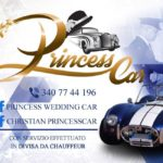 logo princess car